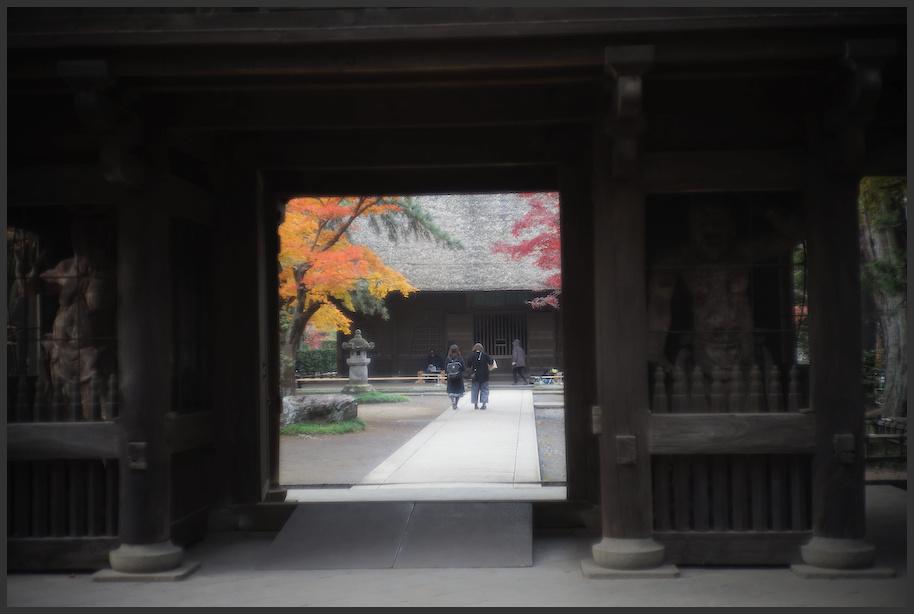 平林寺 -1_b0340572_17491187.jpg