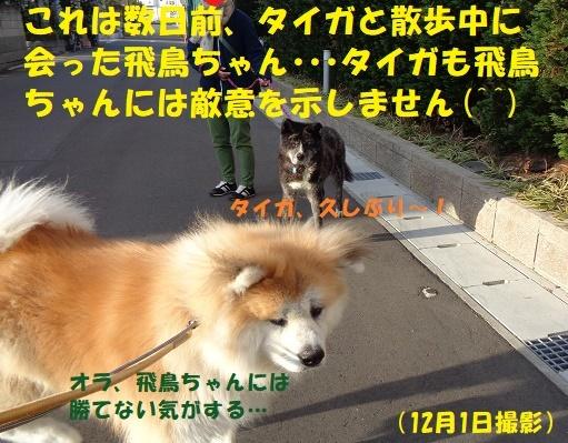 f0121712_13402647.jpg