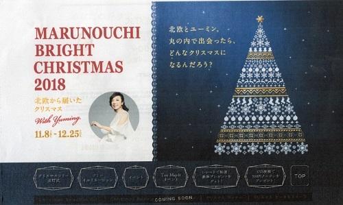 丸の内~北欧から届いたクリスマス with Yuming~_a0116217_23314673.jpg
