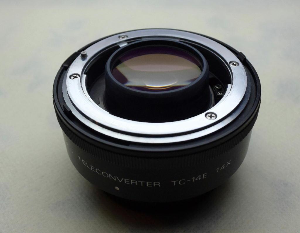 300mm級望遠レンズ『総点検ごっこ』始動②_f0346040_02315418.jpg