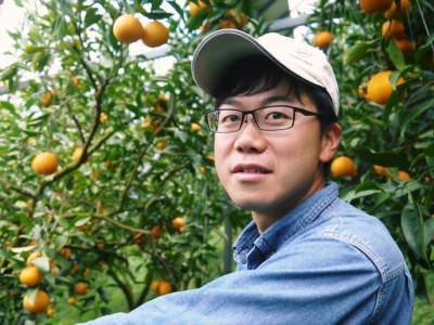 """究極の柑橘「せとか」 今週末の急激な""""寒""""に備え匠は一切の手を抜かず準備をしていました!_a0254656_18070860.jpg"""