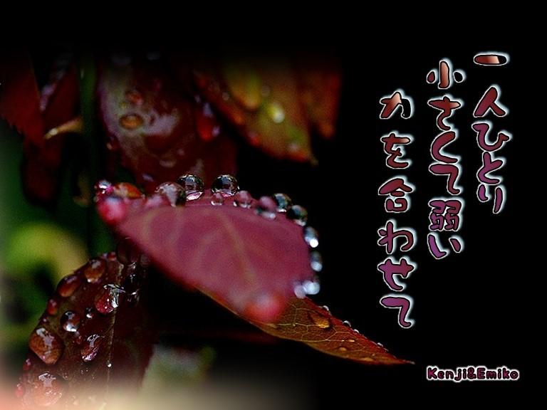 f0214467_01095350.jpg