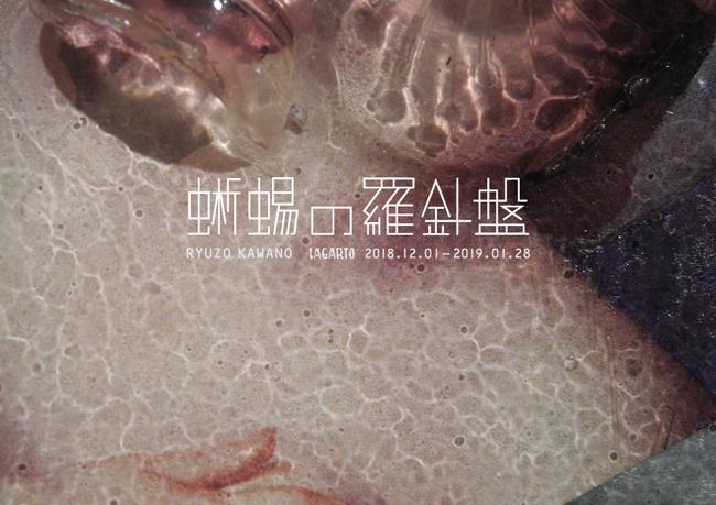 20181204 蜥蜴の羅針盤_b0052471_18582068.jpg