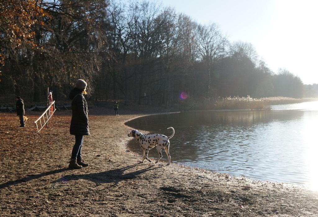 森の中の湖畔散歩_c0180686_21341058.jpg