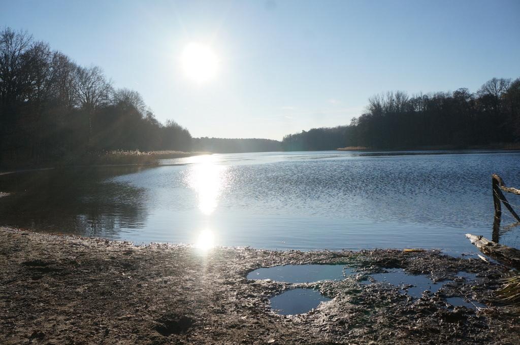 森の中の湖畔散歩_c0180686_21384823.jpg