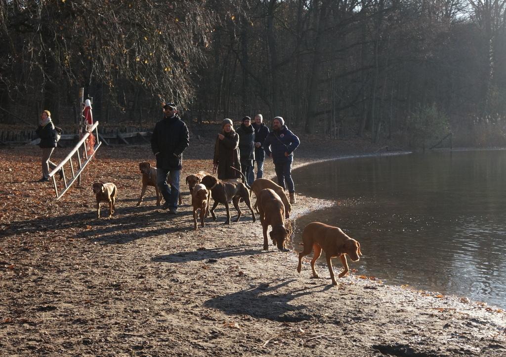 森の中の湖畔散歩_c0180686_21390633.jpg