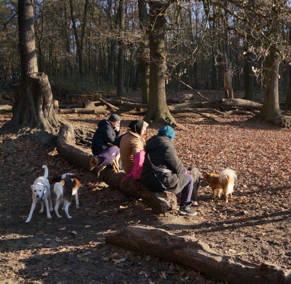 森の中の湖畔散歩_c0180686_22352937.jpg