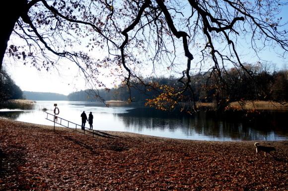 森の中の湖畔散歩_c0180686_22355037.jpg