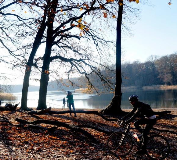 森の中の湖畔散歩_c0180686_22360084.jpg