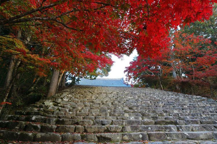 神護寺_e0051888_20043254.jpg