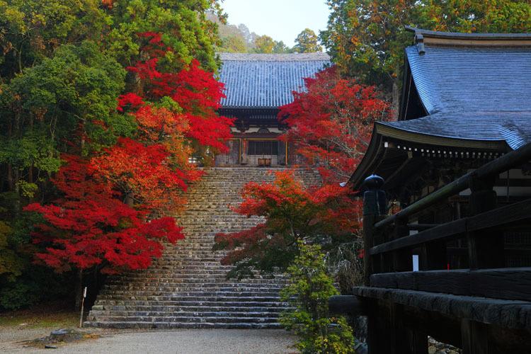 神護寺_e0051888_20043277.jpg