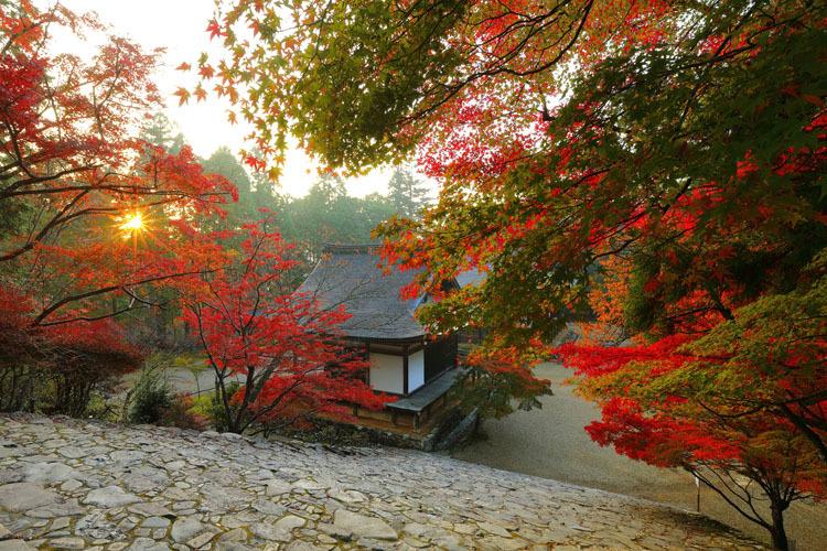 神護寺_e0051888_20055288.jpg