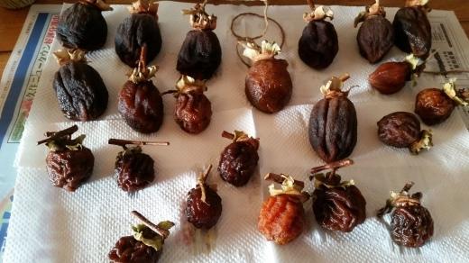 収穫色々~ローゼル、椎茸などなど_f0208315_09582795.jpg
