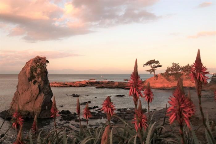 夕陽を見に 秋谷海岸へ (2)_d0150720_10230002.jpg