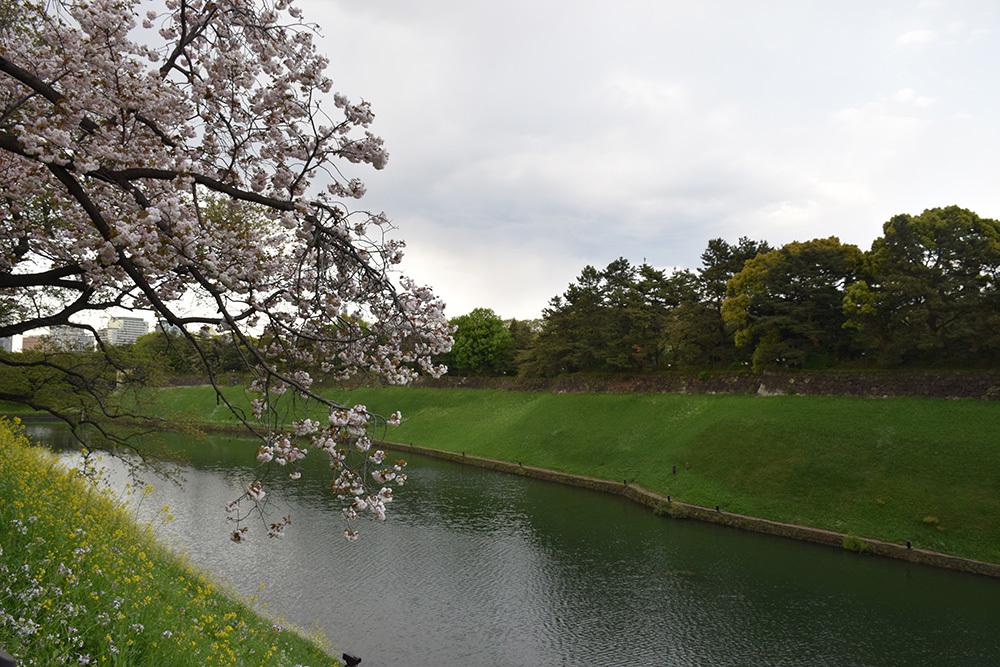 江戸城を歩く。 その10 「半蔵濠~半蔵門~桜田濠」_e0158128_18245130.jpg