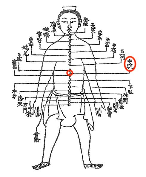 内臓疲労調整って、具体的にはどうするの?(その2)〜ある日の施術より〜_e0073240_06011403.jpg