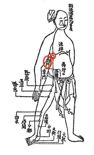 内臓疲労調整って、具体的にはどうするの?(その2)〜ある日の施術より〜_e0073240_06081902.jpg