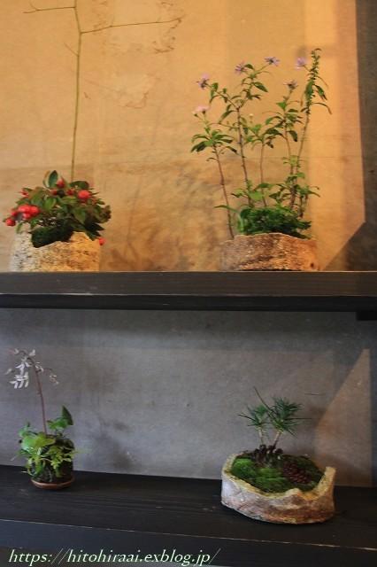 京都散策 花屋「みたて」_f0374092_15210342.jpg