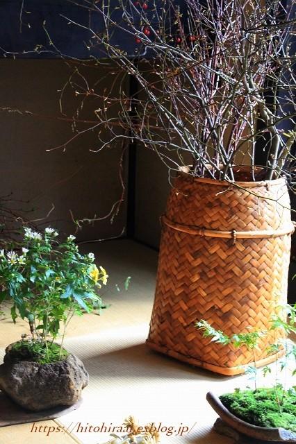 京都散策 花屋「みたて」_f0374092_15231178.jpg