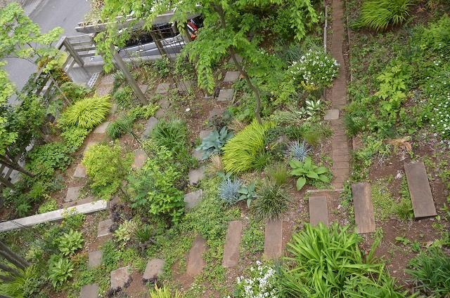 4月23・26日の庭。_c0124100_15224213.jpg
