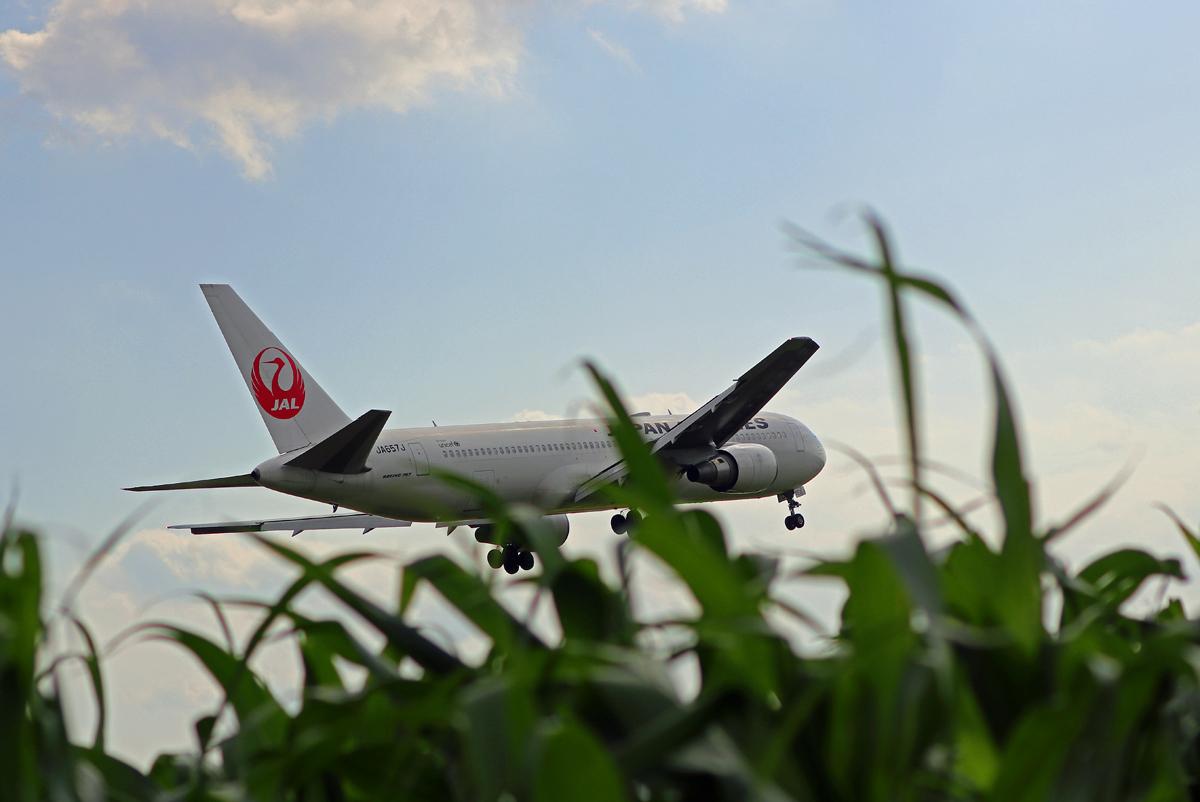 JAL Boing767 。_b0044115_08553633.jpg
