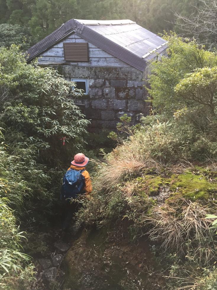 """2018年11月『世界遺産、屋久島』 November 2018 \""""Yakushima (Yaku-Island) - World Heritage- \""""_c0219616_20355724.jpg"""