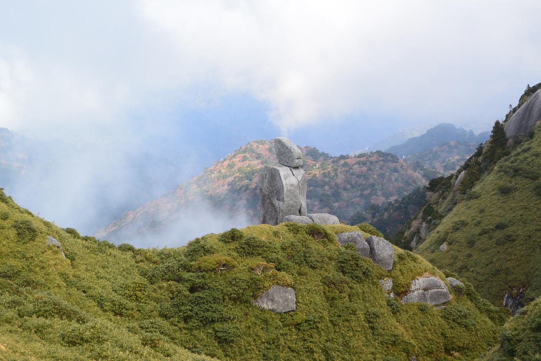 """2018年11月『世界遺産、屋久島』 November 2018 \""""Yakushima (Yaku-Island) - World Heritage- \""""_c0219616_21412550.jpg"""