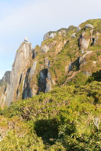 """2018年11月『世界遺産、屋久島』 November 2018 \""""Yakushima (Yaku-Island) - World Heritage- \""""_c0219616_21412687.jpg"""
