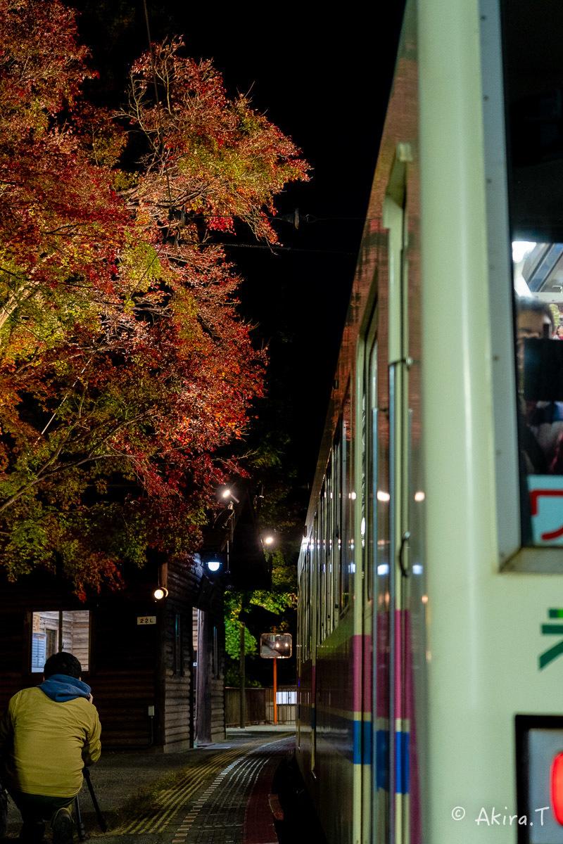 京都の紅葉 2018 〜13〜_f0152550_22125732.jpg