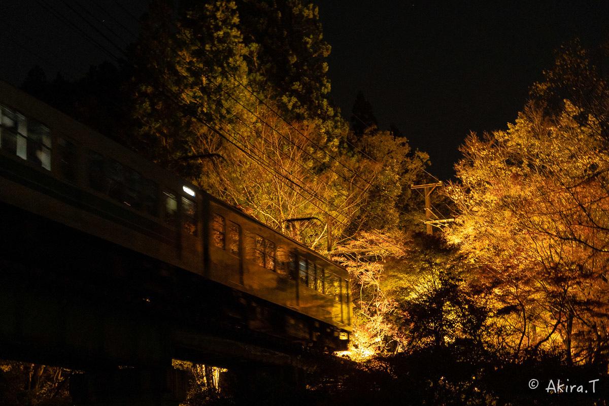 京都の紅葉 2018 〜13〜_f0152550_22131456.jpg
