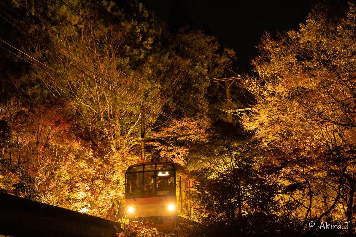 京都の紅葉 2018 〜13〜_f0152550_22132374.jpg