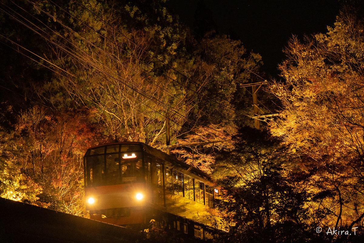 京都の紅葉 2018 〜13〜_f0152550_22135764.jpg
