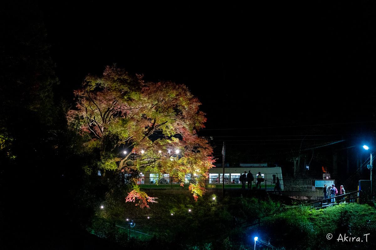 京都の紅葉 2018 〜13〜_f0152550_22140680.jpg