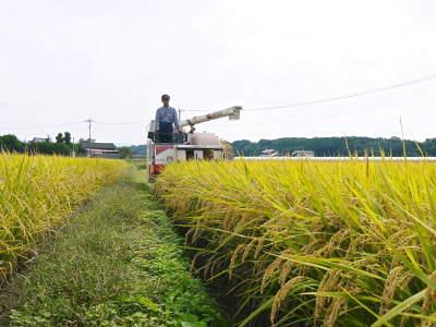 安全で美味しい熊本のお米を紹介!その1:惜しまぬ手間ひまの「七城米 長尾さんちのこだわりのお米」_a0254656_18362745.jpg