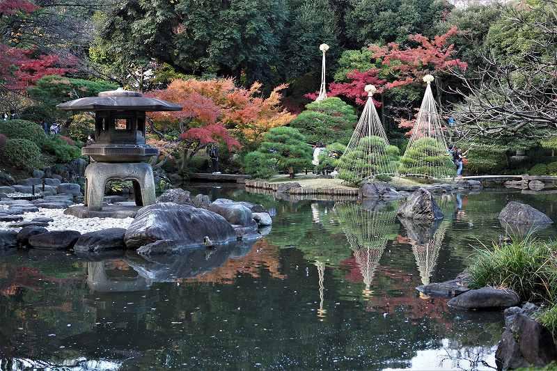 旧古河庭園の紅葉_e0348392_09260184.jpg