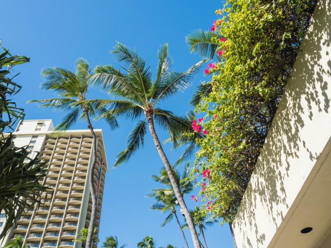 2018常夏の楽園ハワイ(ホノルル・オアフ島)へvol.1~実は初めての〇〇〇~_f0276498_01173156.jpg