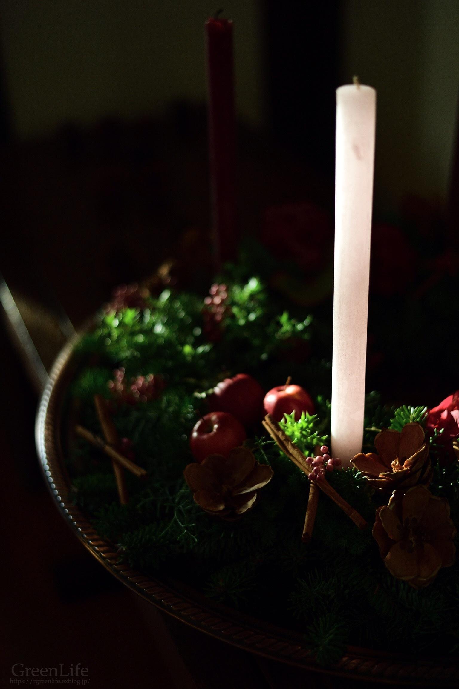 秋の陽に灯る_f0321522_12010971.jpg