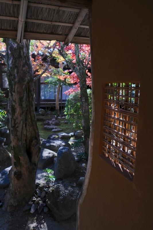 奈良旅 ⑧_f0315034_20061898.jpg