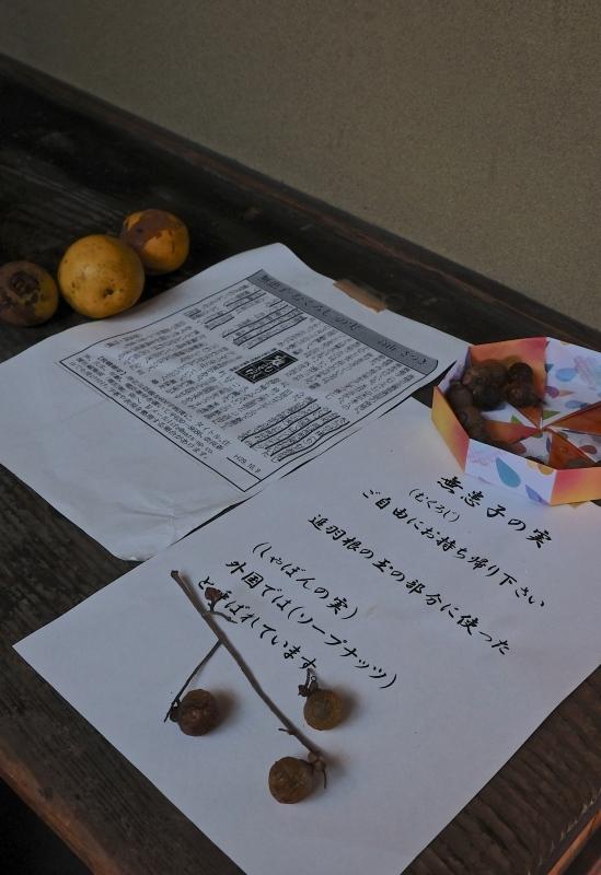 奈良旅 ⑧_f0315034_20072478.jpg