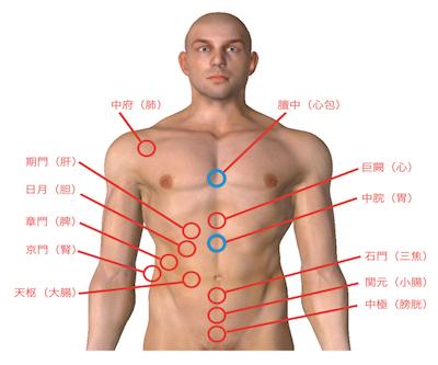 内臓疲労調整って、具体的にはどうするの?(その2)〜ある日の施術より〜_e0073240_14304200.jpg