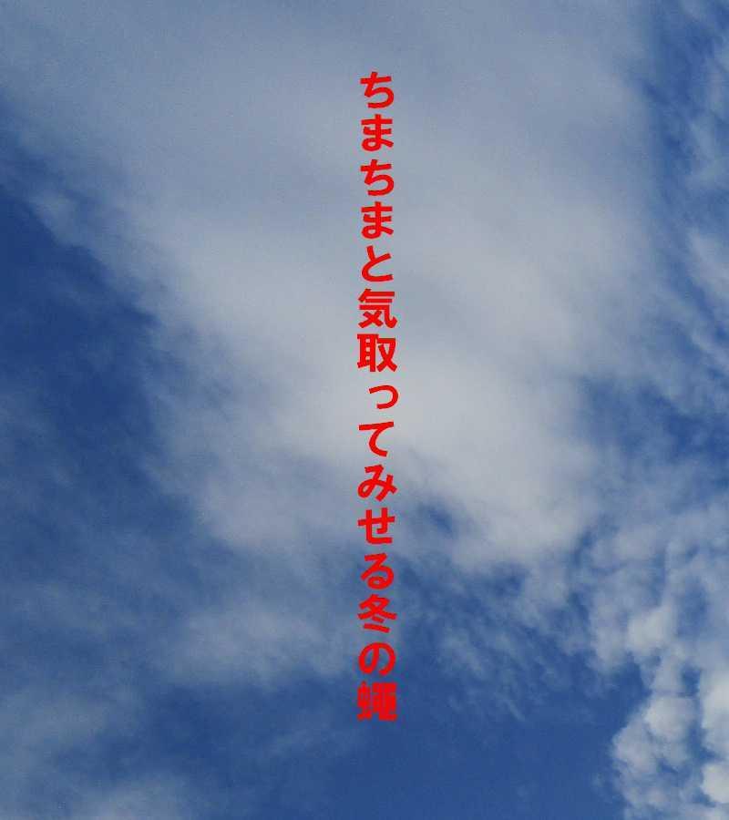 f0117041_06391345.jpg