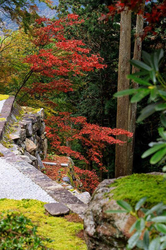 京の紅葉2018 山寺の彩り(古知谷阿弥陀寺)_f0155048_9181140.jpg
