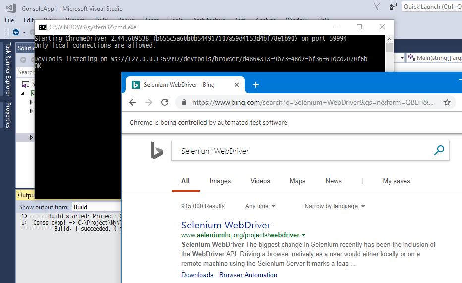 はじめての C# からの Selenium、そして NET Core ではエラーになる場合_d0079457_22341144.png