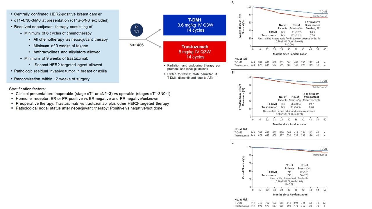 術前化学療法でnon pCRのHER2乳がんにはカドサイラ_f0123083_10010266.jpg