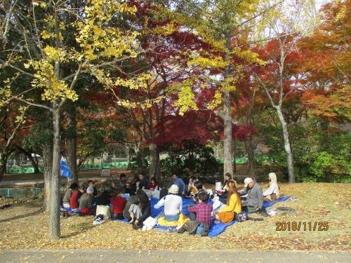 水曜夜永和教室 恒例:秋のハイキングの報告(11月25日実施)_e0175020_09580647.jpg