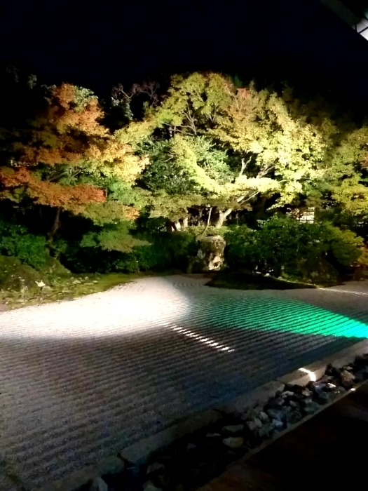 幸せ京都旅 「圓徳院」 幻想的な雰囲気の美しき庭園_c0362623_16550273.jpg