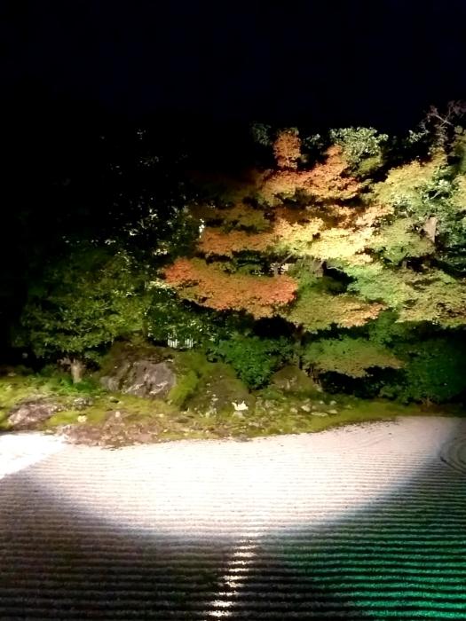 幸せ京都旅 「圓徳院」 幻想的な雰囲気の美しき庭園_c0362623_16550396.jpg