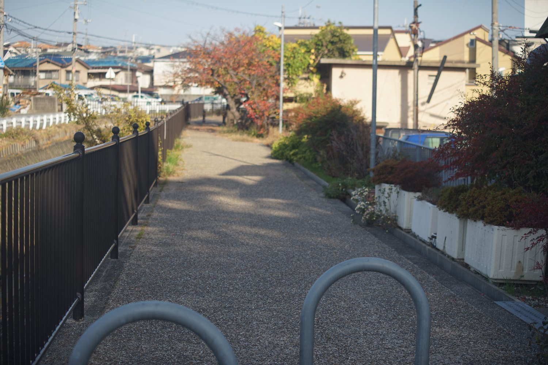 ズームヘキサノンAR 65-135mmF4 で 近所を散歩_b0069128_10384319.jpg