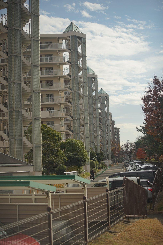 ズームヘキサノンAR 65-135mmF4 で 近所を散歩_b0069128_11070606.jpg