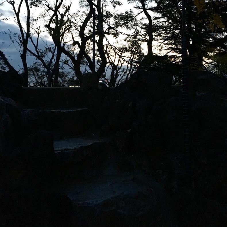 今日も品川富士登山_c0060143_17461411.jpg